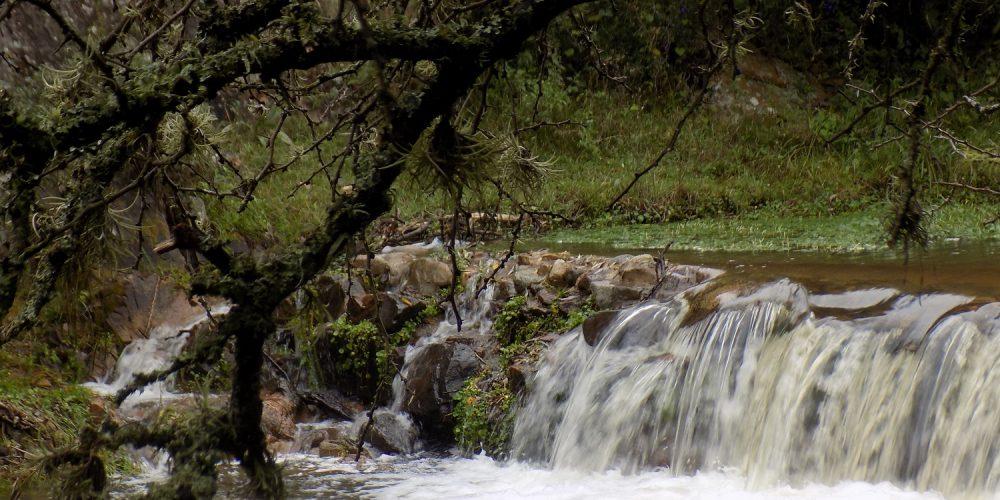 Arroyo La Estancita